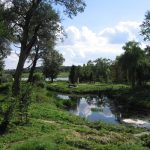 Park Olexandria: Sunny valley